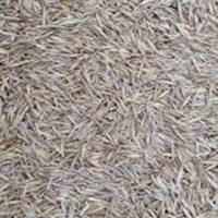 BJF_Feeds_Grass_Seeds_White_10kg