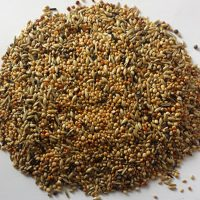 BJF_Feeds_Tropical_Finch_Feed_20kg